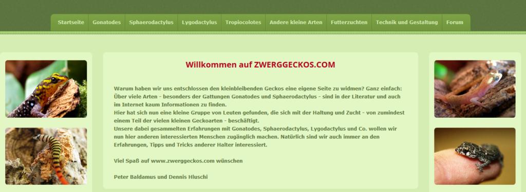 Zwerggeckos-Blog