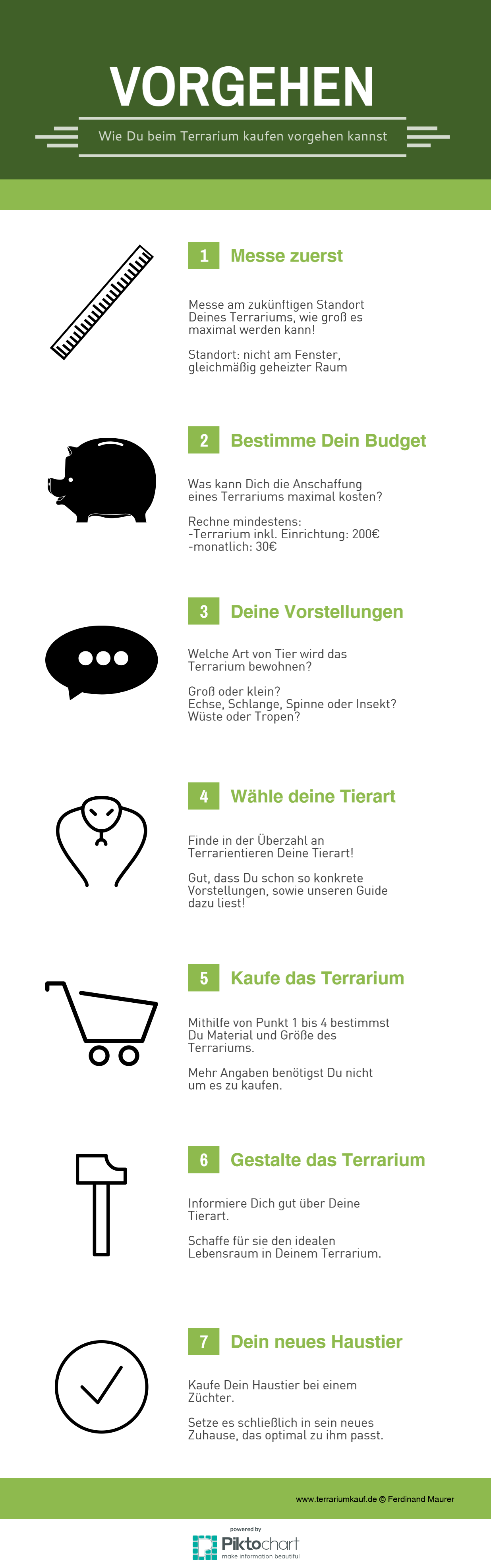 Infografik Terrariumkauf Vorgehen