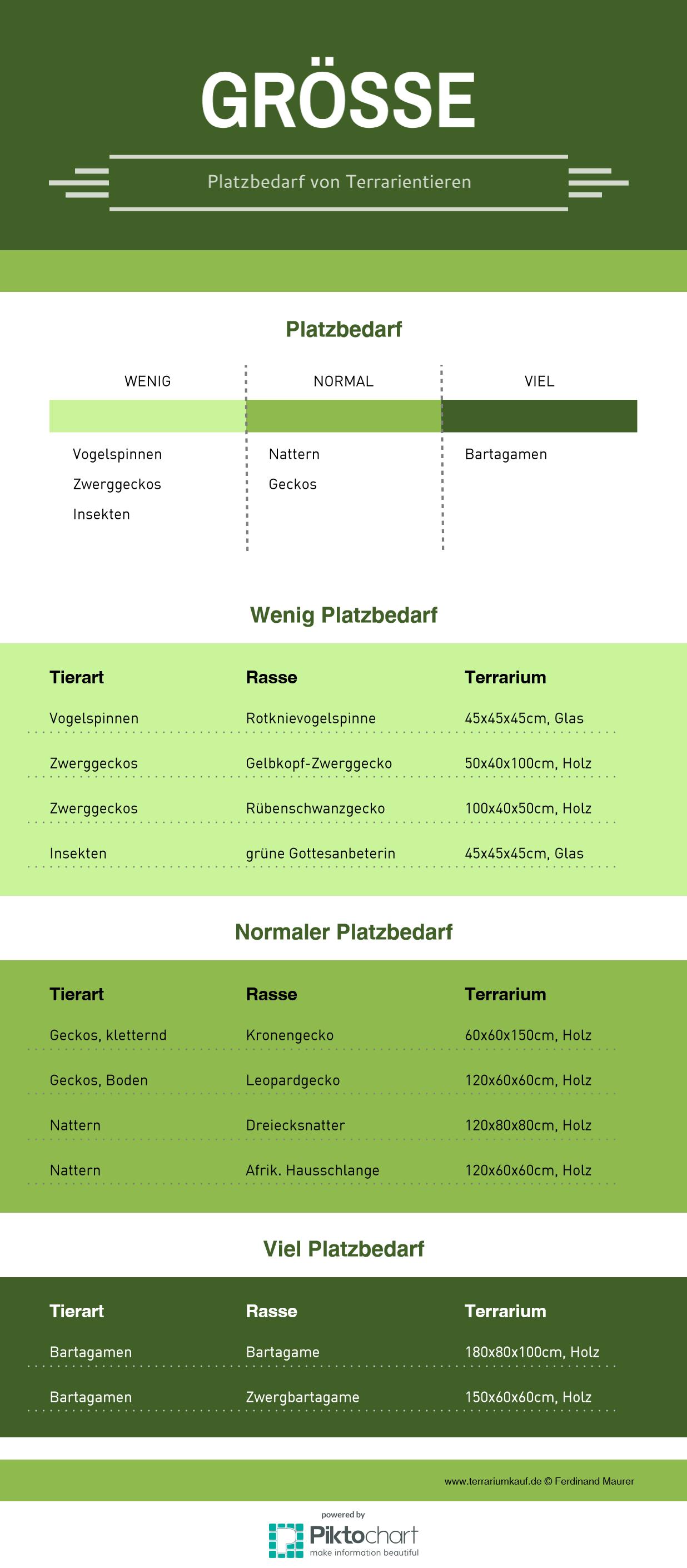 Infografik Terrariumkauf Größe